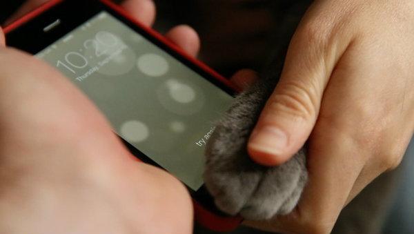 อุ้งตีนแมวก็สามารถใช้งาน Touch ID Sensor บน iPhone 5s ได้ (อีกแล้ว)