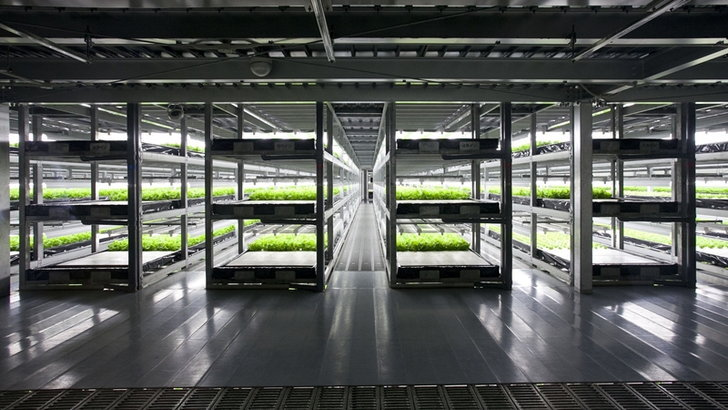 บริษัทญี่ปุ่นเปิดตัวฟาร์มผักโดยหุ่นยนต์เป็นแห่งแรกของโลก