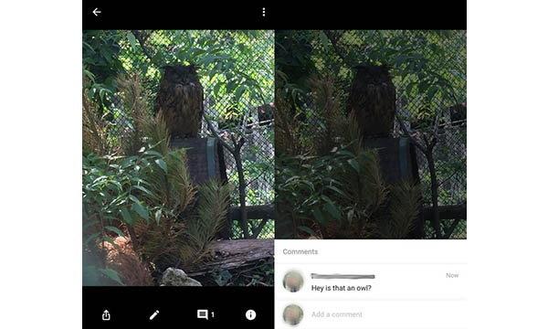 Google Photos เพิ่มฟีเจอร์ Comment ภาพและแชร์อัลบั้มได้แล้ว