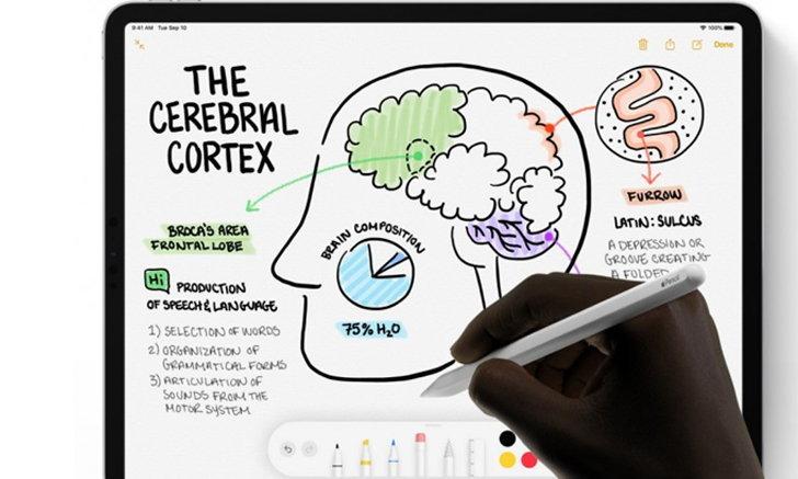 Apple Pencil รุ่นใหม่ จะรองรับการสัมผัสหลายระดับ เพื่อใช้ Gesture ได้หลากหลายขึ้น