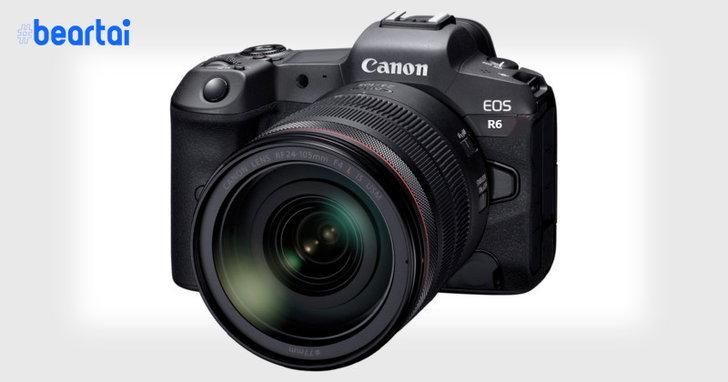 หลุดสเปก Canon EOS R6 ถ่าย 4K60fps ได้, มีกันสั่น IBIS, ใส่ SD Card ได้ 2 ช่อง