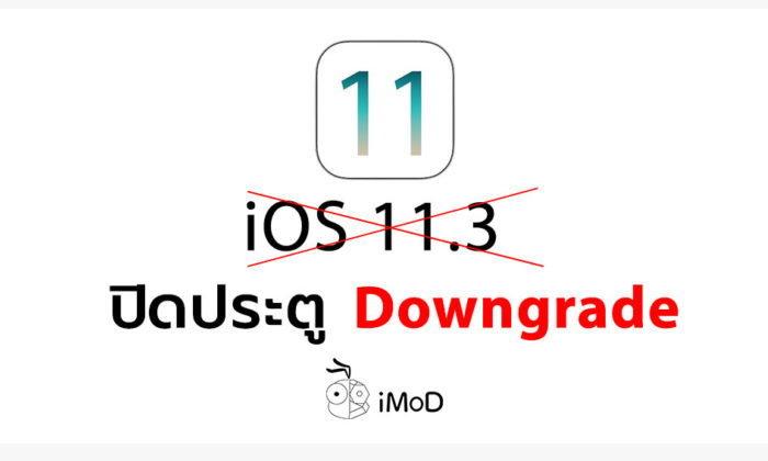 Apple ปิดประตู Downgrade กลับไป iOS 11.3 แล้ว