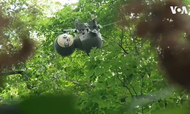 Slothbot หุ่นยนต์สโลว์ไลฟ์ช่วยให้มนุษย์เข้าใจธรรมชาติมากขึ้น