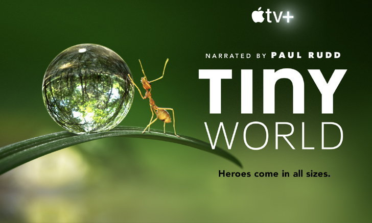 """Apple TV+ เผยตัวอย่างซีรีส์ """"TINY WORLD"""" ให้เสียงและอำนวยการสร้างโดย Paul Rudd"""