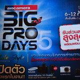 Big Pro Day 5
