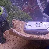 รีวิว PENTAX OptioWP Waterproof Digital