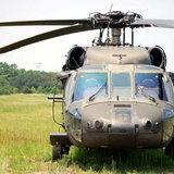 Black-Hawk