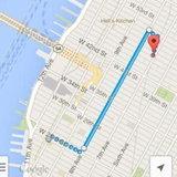 Google Maps [iTunes]