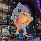 ตัวอย่างภาพถ่ายจาก Xiaomi Mi 9T