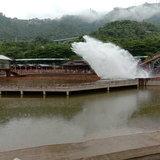 ตัวอย่างภาพถ่ายจาก Vivo Y81