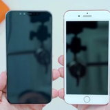 iPhone 6.1 and 6.5