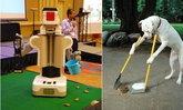 """PR2 หุ่นยนต์เก็บ""""อุนจิ""""สุนัขโดยอัตโนมัติ"""