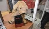 [เก็บตก] CES 2018 : เผยอุปกรณ์ใหม่สุดล้ำเพื่อน้องหมาสุดรัก