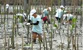 บราเดอร์ เดินหน้านโยบาย Environmental Vision 2050
