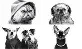 Apple เปิดตัวแคมเปญโฆษณา Shot on iPhone Pets