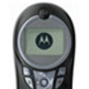 Motorola C113
