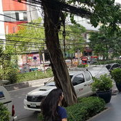 ถนนสุขุมวิทไร้สาย – เสาไฟฟ้า