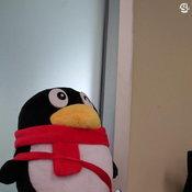 ตัวอย่างภาพจากกล้องหน้า Sony Xperia XA2 Ultra