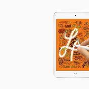 iPad Air Gen 3 / iPad Mini 5