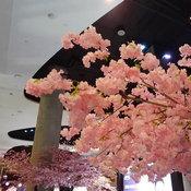 ภาพจาก Samsung Galaxy A20