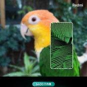 ภาพ Teaser ของ Redmi Note 8 / 8 Pro