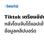 Tiktok เตรียมอัปเดต หลังโดนจับได้หลังผู้ใช้อัป iOS 14 แจ้งเตือนแอบอ่านข้อมูลในคลิปบอร์ด