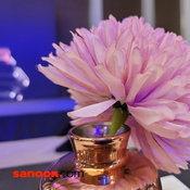ภาพจาก Samsung Galaxy Z Fold2