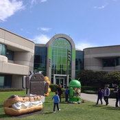 The Android lawn