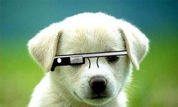 Google Glass จะส่อแววล่ม?