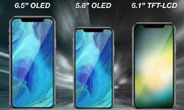 นักวิเคราะห์เผย Apple อาจจะเปิดตัว iPhone ขนาด 6.1 นิ้วที่ซิมการ์ดคู่ ราคาย่อมเยาว์