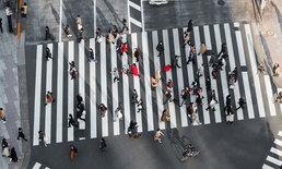 """เกาหลีใต้ติดตั้งระบบช่วยเหล่า """"สมาร์ทโฟนซอมบี้"""" ข้ามถนน"""