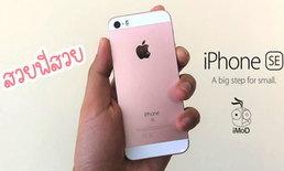 ทำไม iPhone SE ยังเป็น Design ที่ผู้คนชื่นชอบอยู่และอยากให้มีรุ่นใหม่