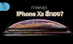 สื่อนอกปล่อยภาพหลุดครั้งแรก iPhone Xs ปี 2018 สีทองทั้งรุ่น 5.8″ และ 6.5″