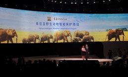 """""""แจ็ค หม่า"""" เผยนำ """"Alibaba Cloud"""" ซัปพอร์ตป่าเคนย่า ปกป้องสัตว์ป่าจากภัยธรรมชาติและมนุษย์นักล่า!"""
