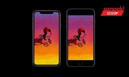 """เทียบข้อดีและด้อยทั้ง 5 ว่าคุณควรจะเลือกใช้ """"iPhone 8 Plus"""" หรือ """"iPhone XR"""""""