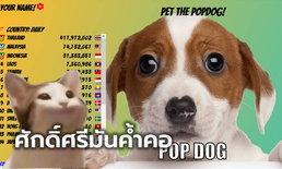 """แมวไปหมามา ต่อเนื่องความสนุกกับ """"POPDOG"""" บอกเลย ไทยแลนด์ต้องที่ 1 เท่านั้น"""