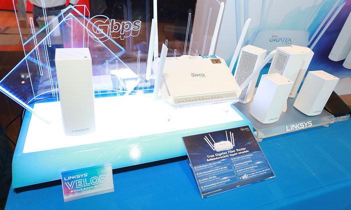 True OnlineจับมือกับLinksys Velopให้ส่วนลด50%เมื่อซื้ออุปกรณ์เสริมเพิ่มสัญญาณWiFi