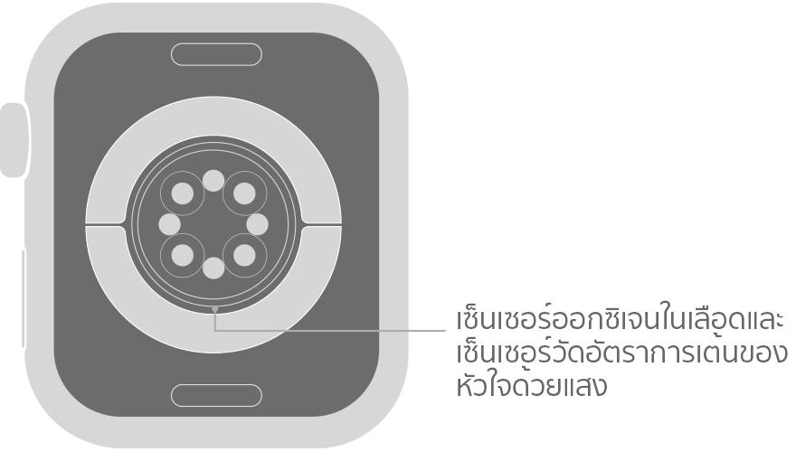 apple-watch-series6-blood-oxy