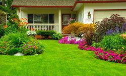 ปูสนามหญ้า ด้วยหญ้าแบบไหนดี