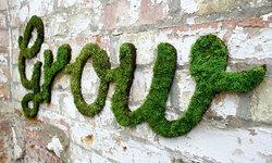 ไอเดียแต่งผนังและกำแพงด้วยหญ้ามอส