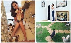 ส่องบ้านโย ยศวดี อบอุ่น น่ารัก พร้อมกับเจ้าสี่ขา หมาตัวน้อยๆ