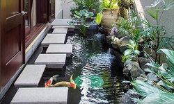 เสริมฮวงจุ้ยบ้านด้วยการเลี้ยงปลาคาร์ฟ ต้องเลี้ยงกี่ตัวถึงจะรวย
