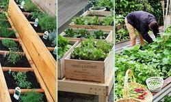 16 ไอเดีย ปลูกผักสวนครัวในบ้าน ด้วยกระบะปลูกผักเก๋ๆ การตกแต่งสวน