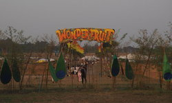 Wonderfruit Festival งานของคนเอาความสุข สนุกเป็นที่ตั้ง