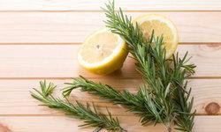 8 วิธีทำบ้านให้หอมสดชื่นอย่างเป็นธรรมชาติ