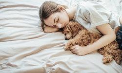 11 สิ่งที่ควรนำออกไปจากห้องนอนทันที