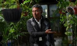 นักธุรกิจอินเดียบรรเจิด ทำเรือนกระจกกรองมลพิษในสำนักงาน