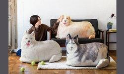 """เหงาๆไม่มีใครให้กอดก็กอดน้องหมานุ่มนิ่มนี้ได้ ด้วย """"ถุงเก็บผ้าห่มสุดครีเอทรูปน้องหมา"""""""