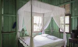 """""""มุ้ง"""" เครื่องนอนสุดคลาสสิก เลือกอย่างไรให้ตกแต่งห้องนอนได้สวยมุ้งมิ้ง"""
