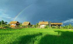 """พาทัวร์สัมผัสธรรมชาติไปกับ """"บ้านไม้สไตล์คันทรี"""" ท่ามกลางบรรยากาศร่มรื่นของฟาร์มสเตย์"""